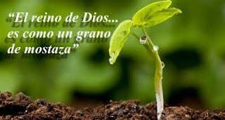 Resultado de imagen de evangelio del grano de mostaza