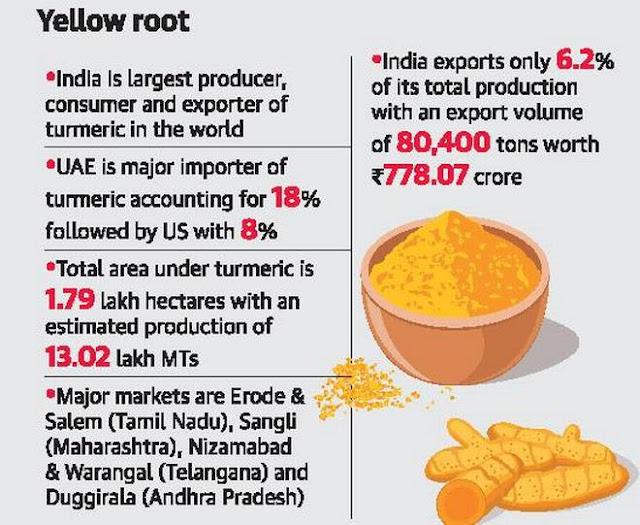TS to set up special turmeric cell