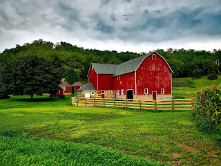 A bright red horse barn surrounded by fences, fields and trees