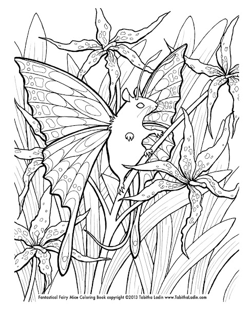 Printable Coloring Pages For Teenagers Difficult Fairy  Coloring Tone