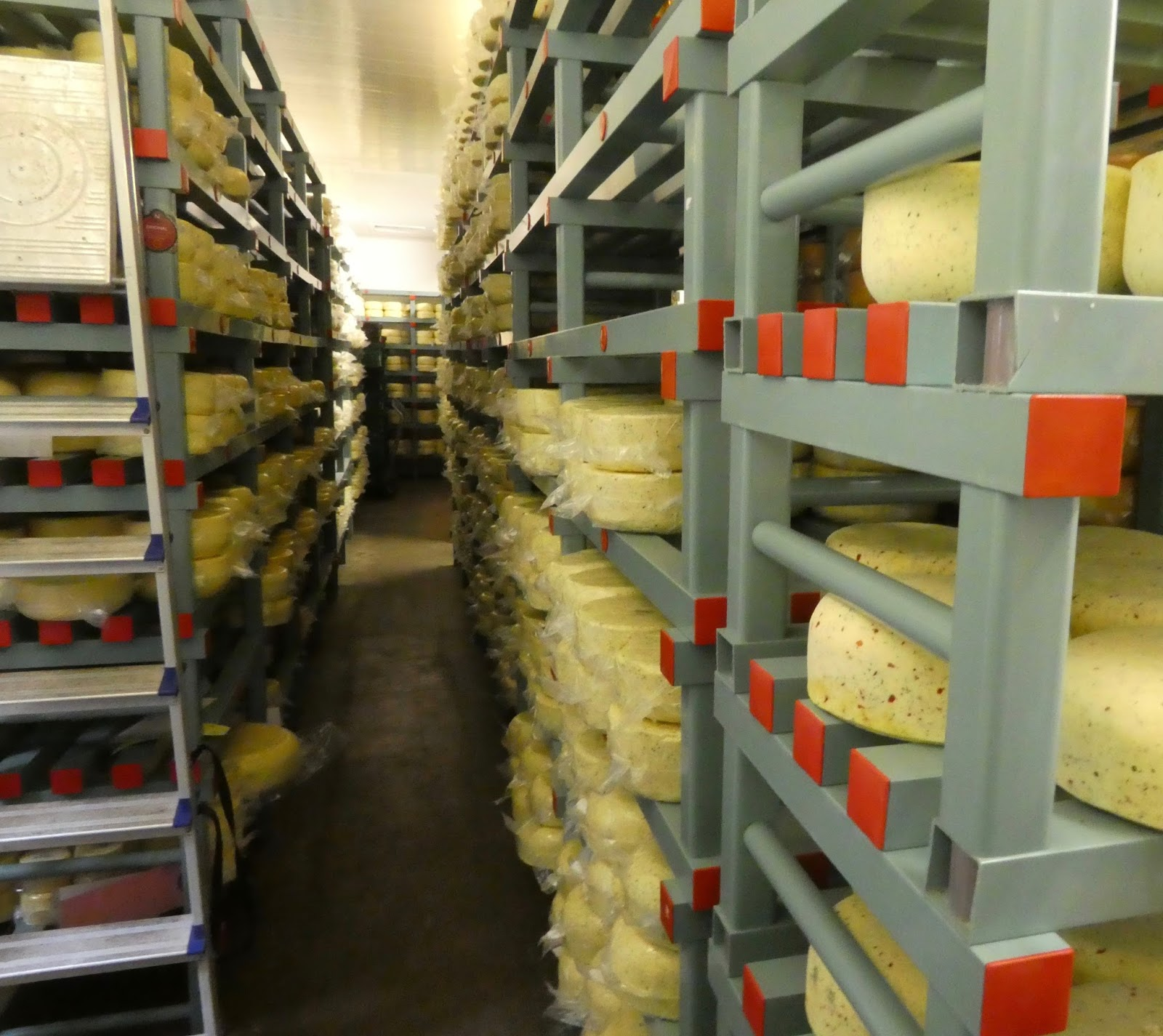 Northumberland Cheese Dairy Tour With Kids - A Review