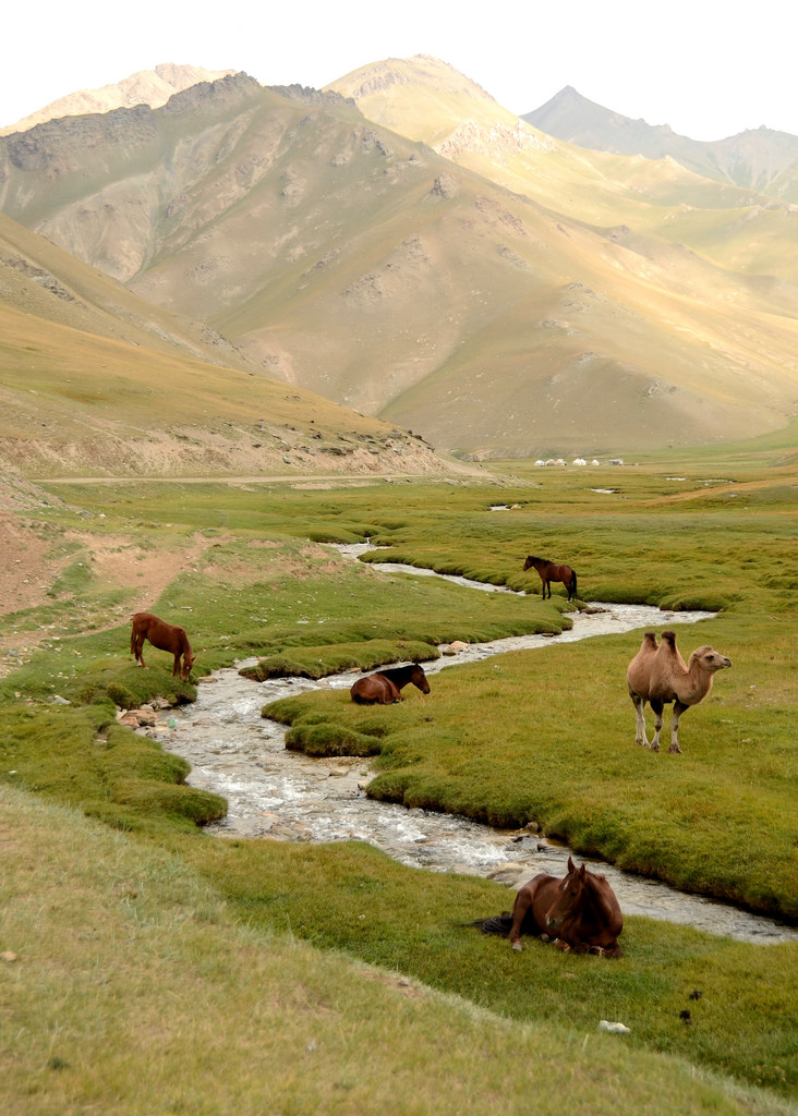 Stream passing through the valley, Tash Rabat, Kyrgyzstan