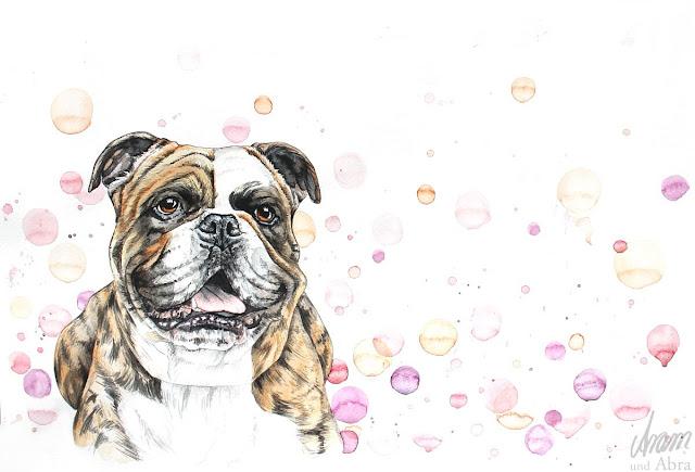 Continental Bulldog Nando, Aquarell nach Fotovorlage, DIN A3