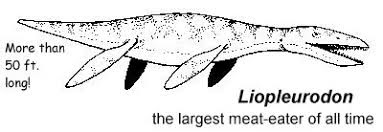 Liopleurodon Coloring Pages With Name