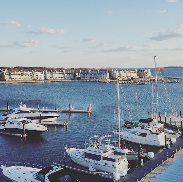 Marina view from our hotel on Kent Island in Maryland