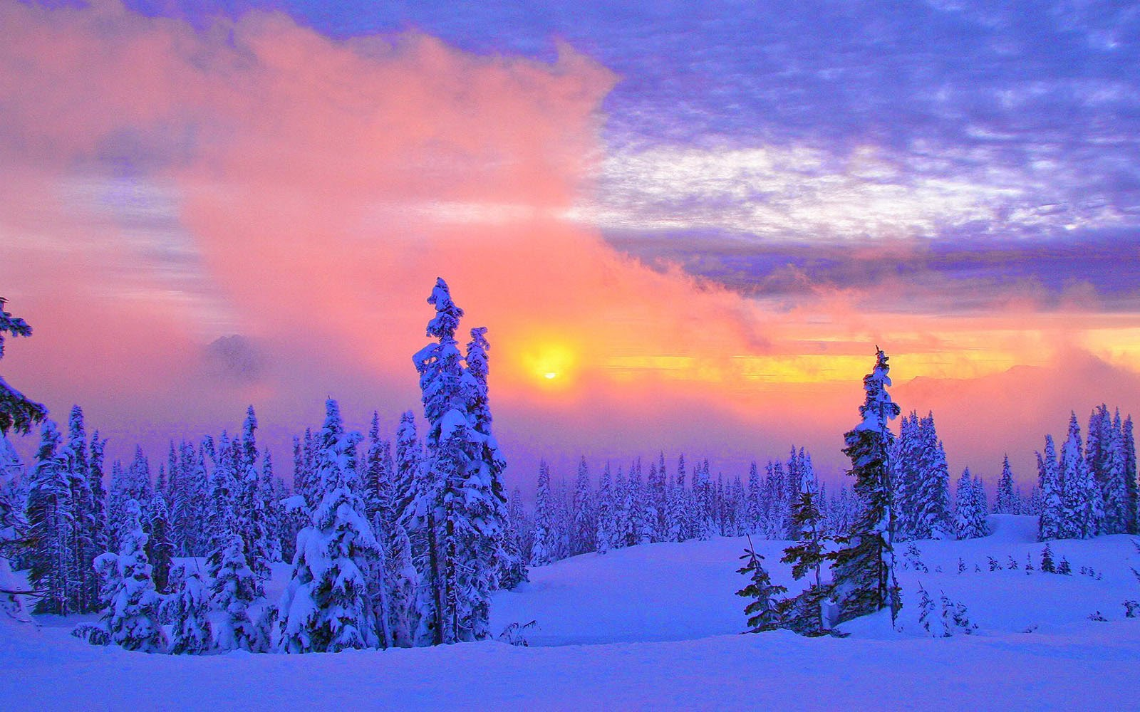 Wallpapers beautiful winter scenery wallpapers - Winter desktop ...