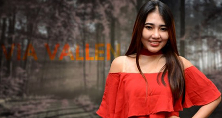 Lirik Lagu Via Vallen - I'm Sorry I Love You