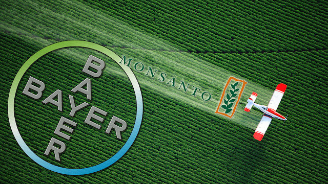 Bayer Monsanto - Michell Hilton
