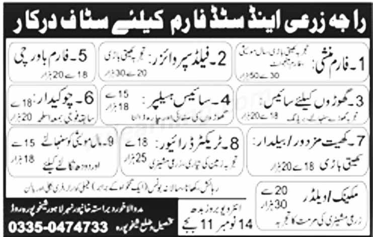 Jobs in Sheikhupura, Raja Zarai and Stud Form Nov 2018