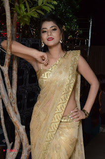 Actress Yamini Bhasker Pictures in Saree at anic Movie Audio Launch  0054.JPG