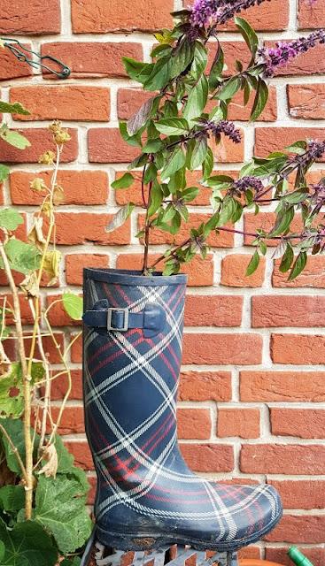 DIY: Schnell mal einen Stiefel bepflanzen. Der Gummistiefel sieht bepflanzt wieder wie neu aus!