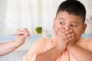 Cara Menambah Nafsu Makan Pada Balita/Anak