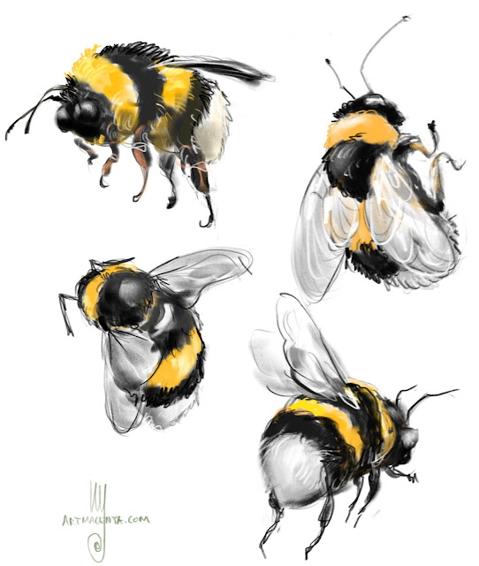 Bumble bees sketch by Artmagenta