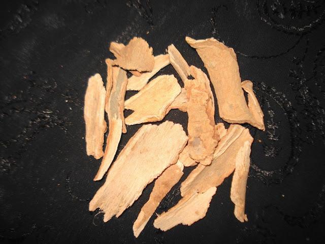 Vỏ Cây Dung - Symplocos racemosa - Nguyên liệu làm thuốc Chữa Bệnh Tiêu Hóa