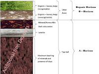 Layers Of Soil Diagram