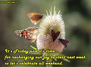 It's Friday and it's time for recharging our joy to start next week, so let's celebrate all weekend.