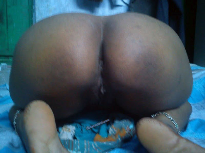 Tamil Dirty Sex Pictures - The Best Tamil Sex Website -4661