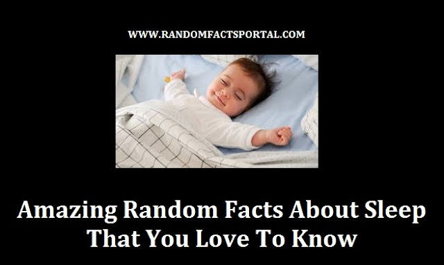 Amazing Random Facts About Sleep  That You Love To Know