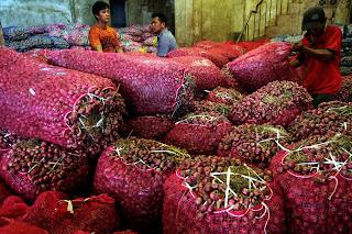 supplier bawang merah ,bawang merah murah,pengepul bawang merah Brrebes