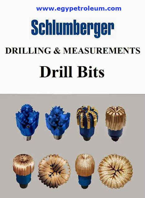 Drilling and Measurements Drill Bits