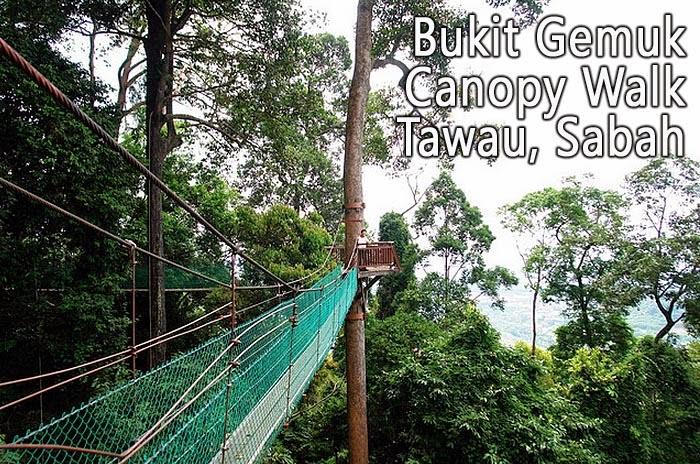 Bukit Gemok Canopy Walk in Tawau, Sabah