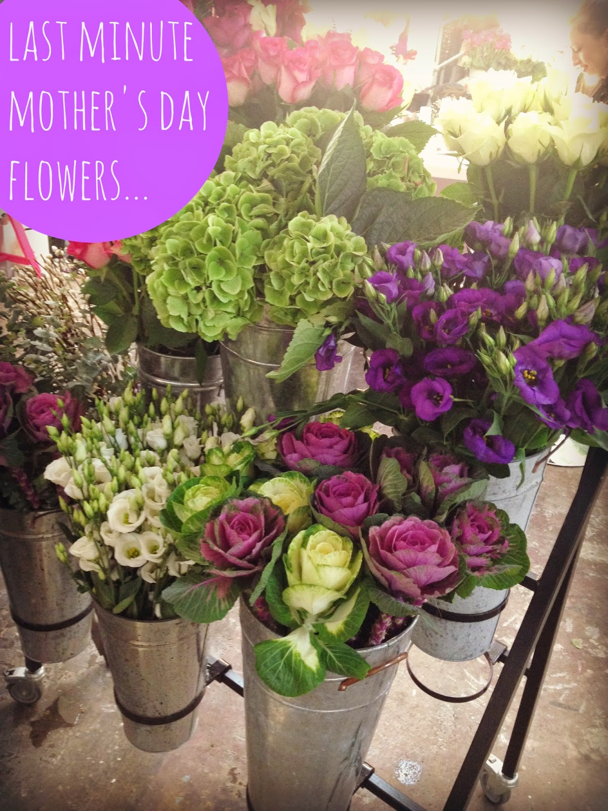 mamasVIB   V. I. BUYS: Last Minute Mothers Day flowers… for less!   mamasVIb   blog   mummy blog   marks and spencer   mothers day   mother day gifts   mothers day flowers   bloom and wild   bloom & Wild   apple yard flowers   modern bouquets   flowers by post   roses   bunch of flowers   dotcomgiftshop   flowers for mu  mothers day   floral arrangements   blooms   discount codes   flowers for less   mamasVIB bonita turner   flowers   bouquets   florists