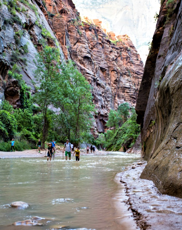 Wanderung Fluss Zion National Park USA mit Kindern unterwegs