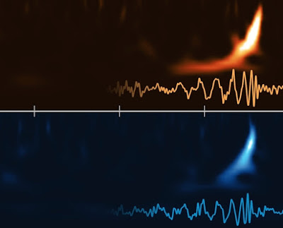 gravitational waves detected by two LIGO stations