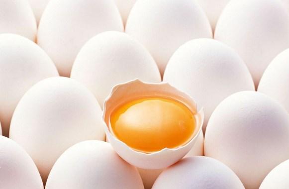 Manfaat Telur Ayam Kampung Meningkatkan Kesuburan Pria Backlink 14