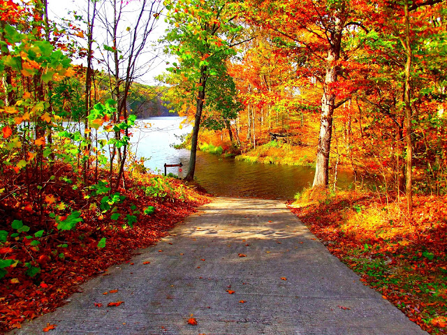 Yellowwood State Forest - Fishing Boat Ramp