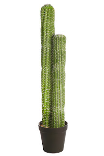 plantas artificiales cactus