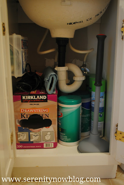 Rubbermaid Clean and Dry Plunger Serenity Now blog, Giveaway