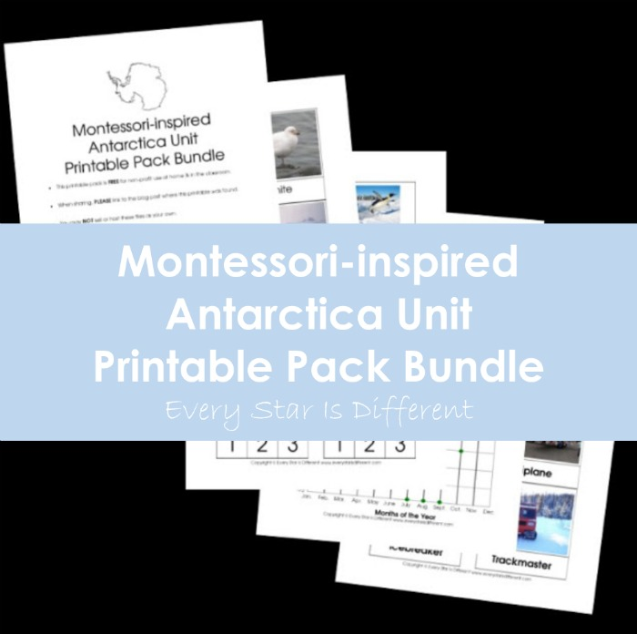 Montessori-inspired Antarctica Unit Printable Pack Bundle