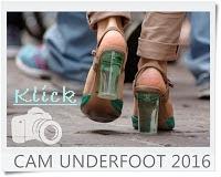 http://vonollsabissl.blogspot.de/2016/06/22-cam-underfoot-aus-dem-hochbeet.html