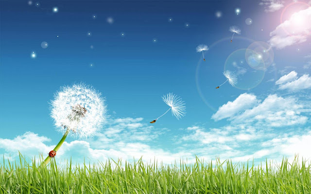 الهواء ضروري لحياة الإنسان والحيوان والنبات