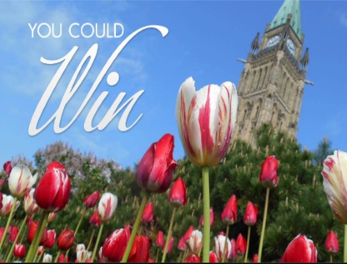 Home Hardware Canada 150 Tulip Giveaway