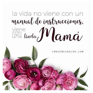 Imágenes Feliz Día de la Madre Frases Mensajes Amor Mamá