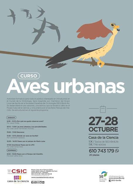 Curso Aves urbanas. Grupo Local SEO-Sevilla.