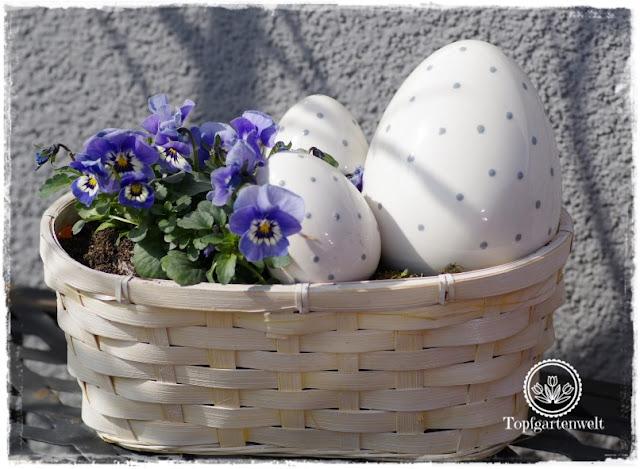 Gartenblog Topfgartenwelt Topfgarten + DIY mit Knagglig (Kiste) und Töpfen viel Platz auf kleinem Raum schaffen - Blumendeko mit Hornveilchen und Bellis passend für den Frühling und Ostern: Osternest mit Blumen Hornveilchen und Eiern für den Garten