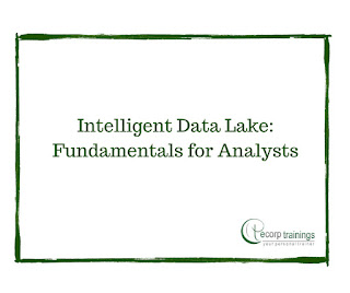 Intelligent Data Lake: Fundamentals for Analysts training