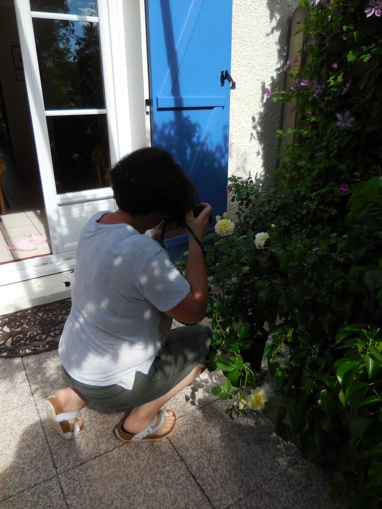 Cagouille 39 s garden chaalis 2017 le jardin du chat vert for Ca vient du jardin
