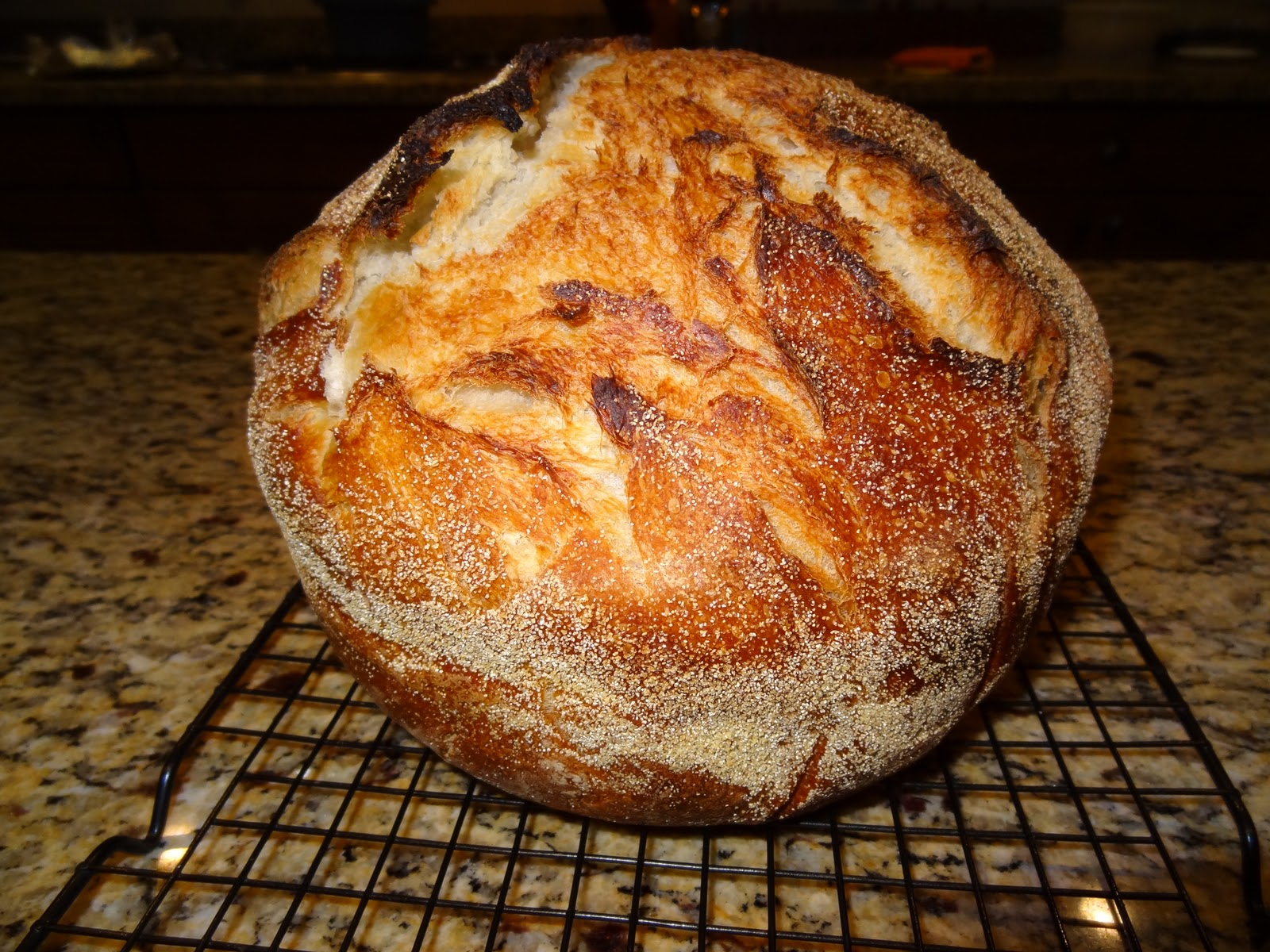 G Rated No Knead Dutch Oven Bread