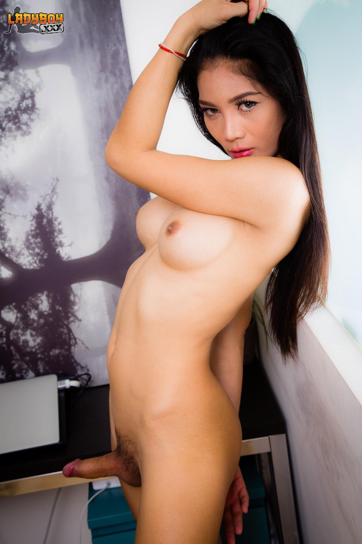 Korean Babe Japanese Porn Stars With Huge Tits Tranny Fucks