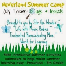 Neverland Summer Camp ~Bugs and Insects for K-2nd ~ July 2014
