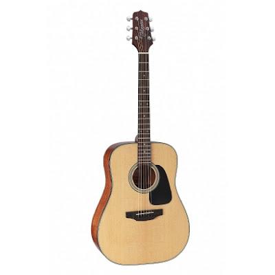 dan guitar takamine d1dns