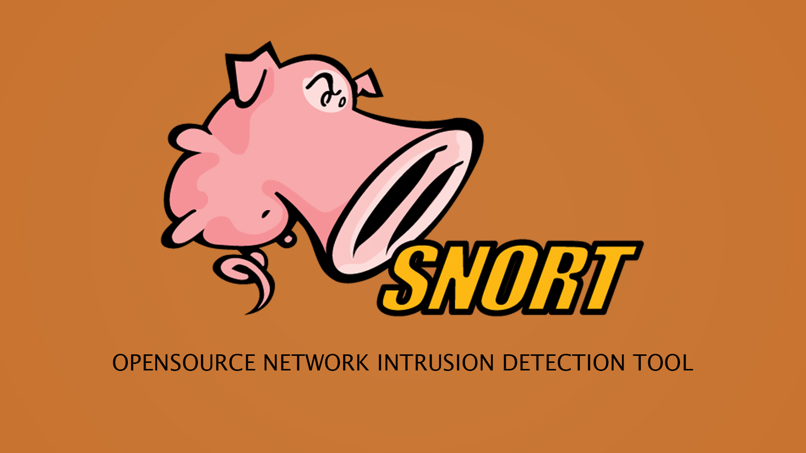 Snort - OpenSource Network Intrusion Detection Tool