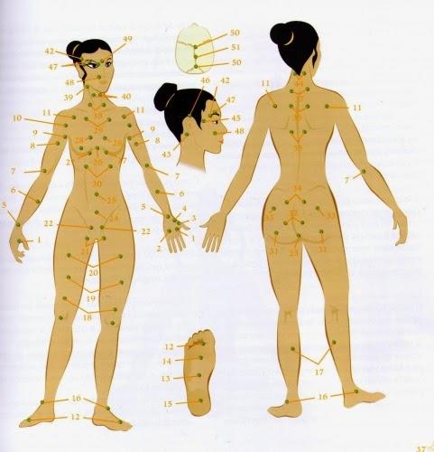 dos figuras humanas de frente y espalda indicando con numeros los puntos de los centros de energia