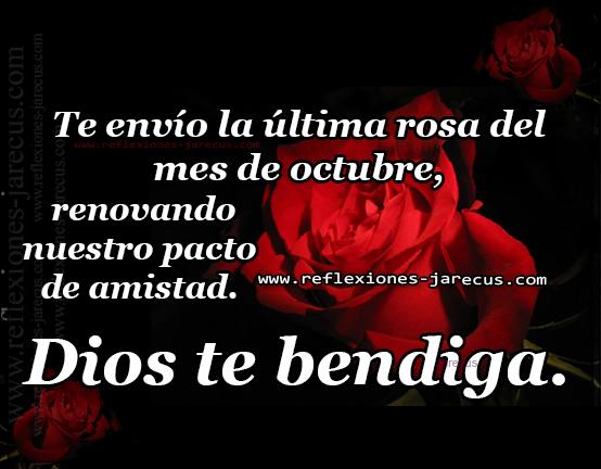 Te envío la última rosa del mes de octubre, sellando y renovando nuestro pacto de amistad Dios te bendiga.