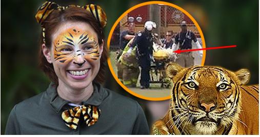 MENGERIKAN! Detik-Detik Pawang Harimau Diterkam Harimau Peliharaannya!