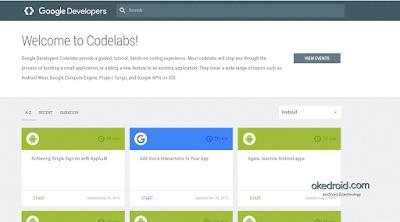Situs Web Codelabs